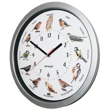 Zegar ścienny GŁOSY PTAKÓW srebrny ATE2035S PK2 SW