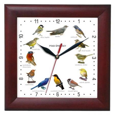 Zegar ścienny głosy ptaków DREWNO mahoń